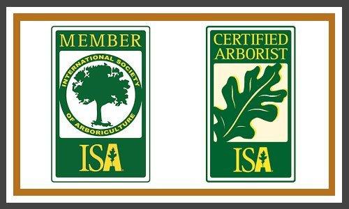Certified Arborist Logos